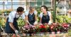 Робота за кордоном. 10 наївних питань